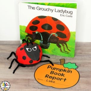 Grouchy Ladybug Inspired Pumpkin Book Report