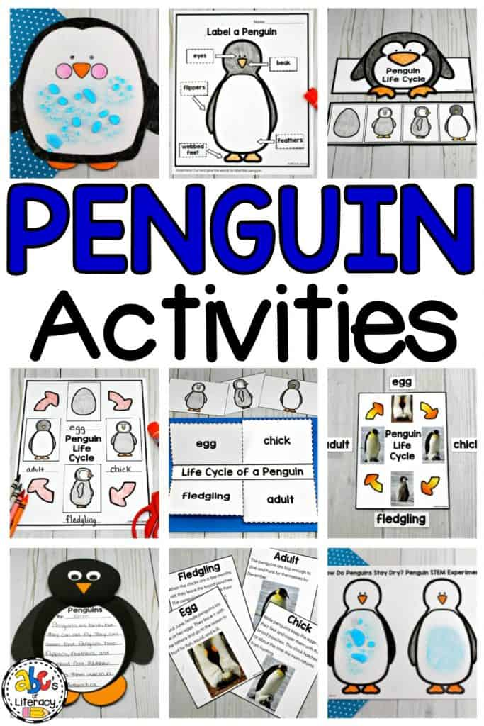Penguin Activities, Penguin Science Experiment, Penguin Learning Activities, Penguin Resources, Penguin Life Cycle, Penguin Parts, Parts of a Penguin