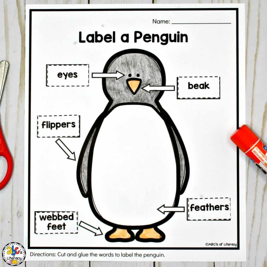 Penguin Activities for a Winter Animal Unit of Mini-Lesson
