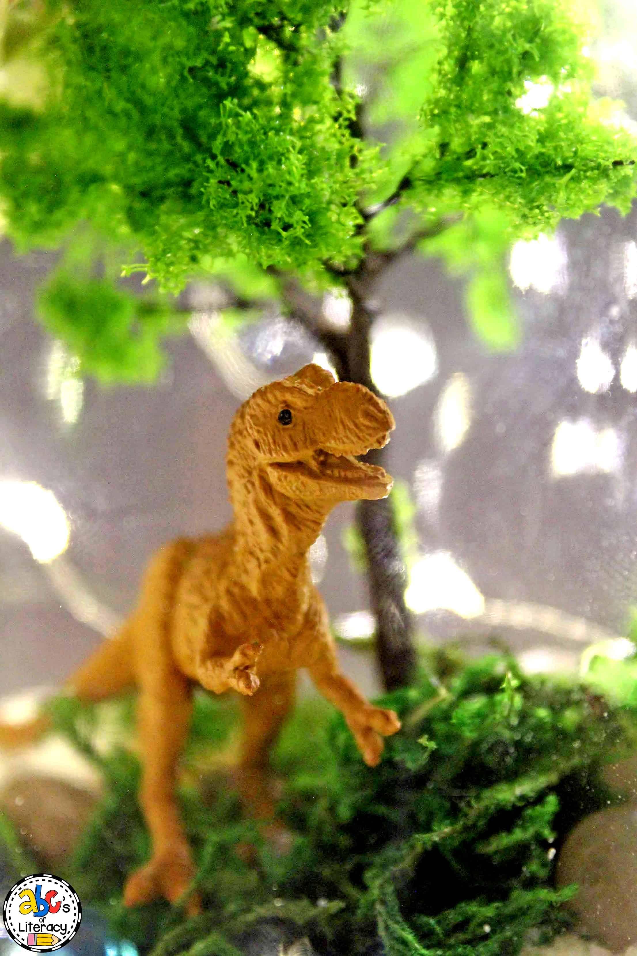 close up of a Dinosaur Terrarium