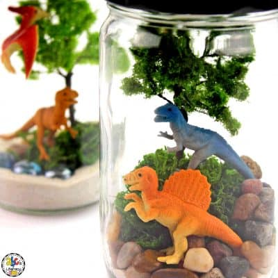 How To Make A Dinosaur Terrarium