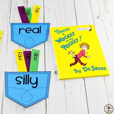 Wocket Pocket Real & Nonsense Word Sort